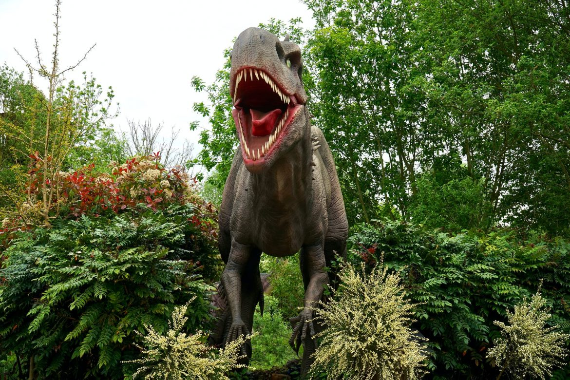 Unknown and Surprising facts about Dinosaurs